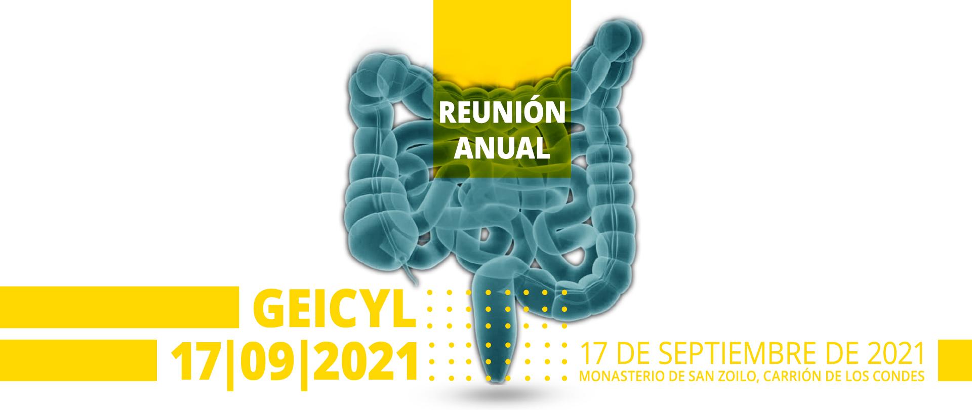 Reunión Anual Geicyl 2021