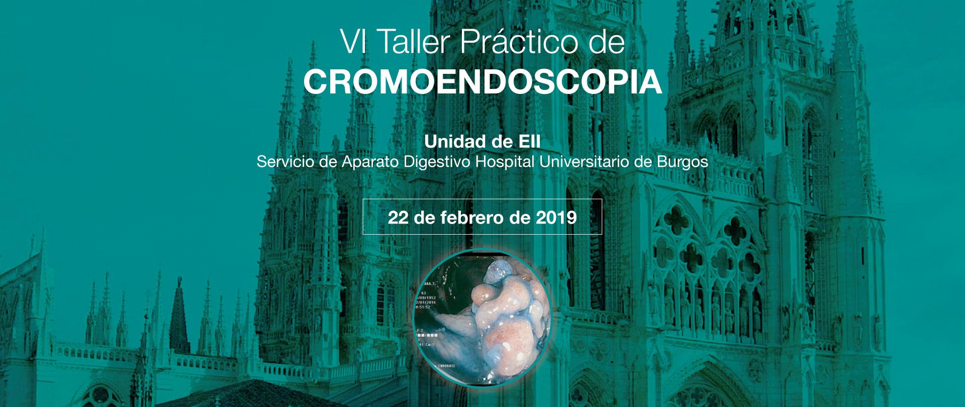 VI Taller Práctico de Cromoendoscopia